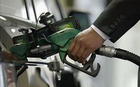 Цены на бензин в России за месяц выросли на 10%