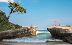 МИД Японии отказался от фразы о возвращении Курил