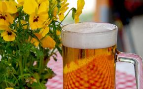 Эксперт: За последние 10-11 лет примерно на 30% сократилось потребление пива