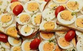 Ученые нашли способ делать автозапчасти из яиц и помидоров