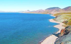 В древнем озере на Чукотке обнаружены огромные реликтовые рыбы
