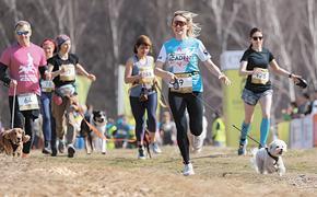 Весна в Москве – время физкультуры и спорта
