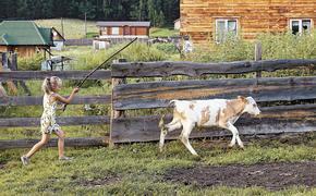 Социолог Людмила Намруева: Политика власти заставляет усомниться, есть ли просвет в сельской жизни